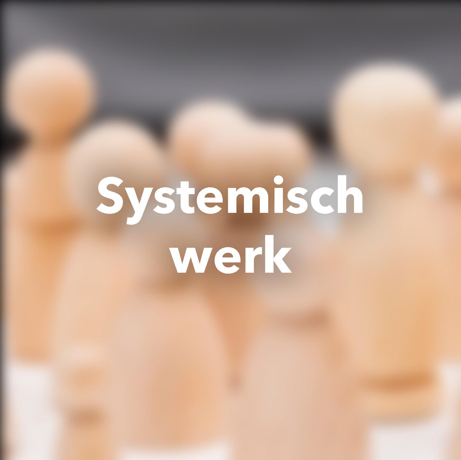 Systemisch werk